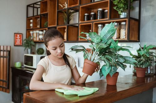 A teenage girl taking care of plants and wiping a table clean for her chores